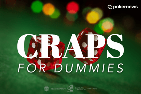 Craps for Dummies: How to Play Craps Online