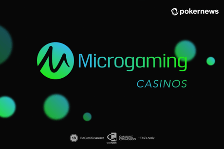 Die besten Microgaming Casinos Deutschland 2018