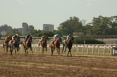 Cali Horse Racing Industry Pledges Support of Online Poker Bill AB 2863 Via Letter