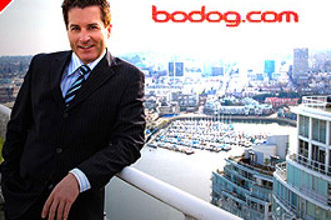 Mesés Ajánlat a Bodog Pokertől - Calvin Ayre Wild Card Poker II 0001