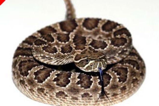 Tentativa de Homicídio com Cobras Cascavéis por Causa de Dívida de Poker 0001