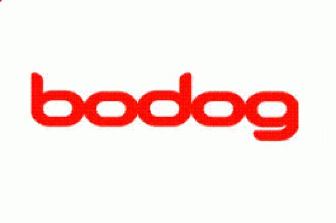 Começou Bodog Poker Open 0001