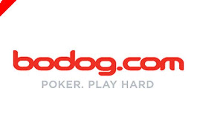 Bodog annonserer Poker Open turneringsserie 0001