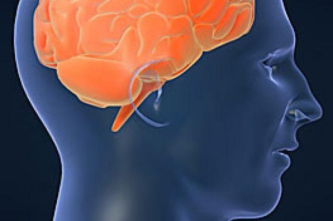 """Wo im Gehirn wird """"Risiko"""" eingeschätzt? 0001"""