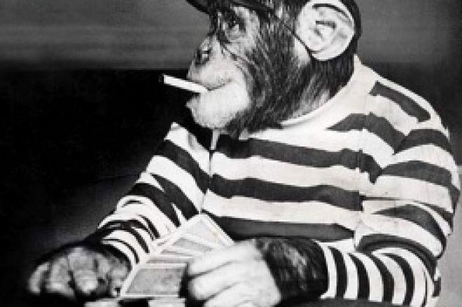イギリス、ポーカー関連報道増える 0001