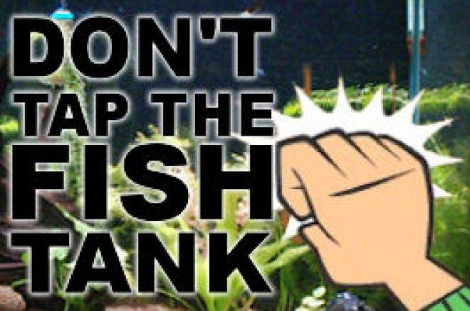 Don't tap the fishtank! 0001