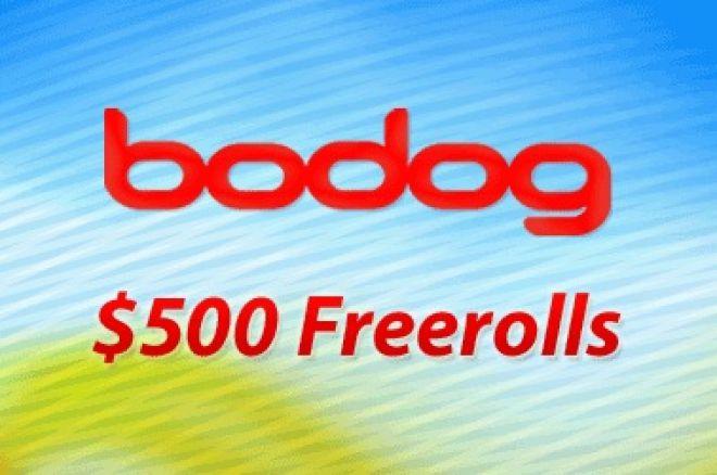 bodog freerolls
