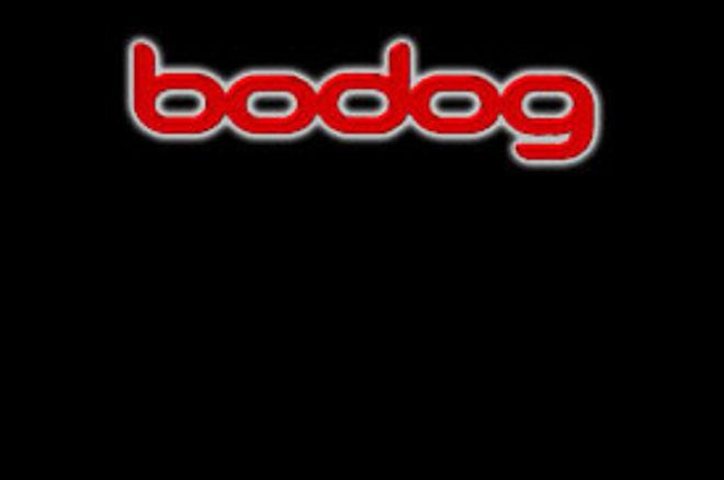 Bodog Poker i pknk/pnews lansiraju seriju $500 Freeroll Turnira 0001
