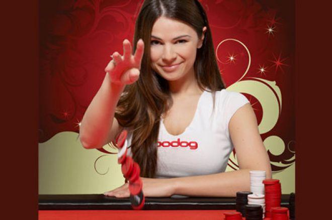 Bodog Poker Pomaže Novajlijama! 0001