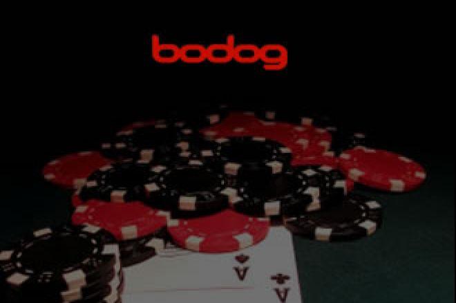 Новости дня: Bodog Poker: ты кто такой? давай, до... 0001