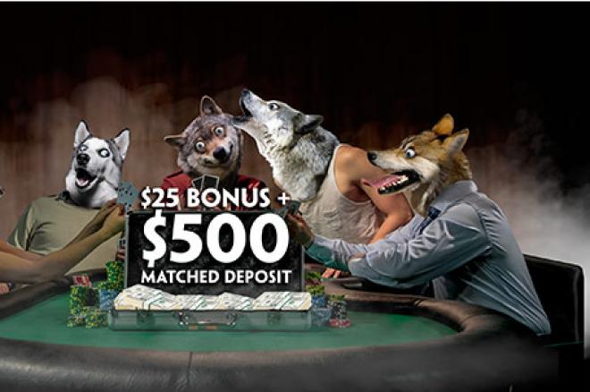 Pelningiausi gegužės mėnesio pasiūlymai: Paddy Power Poker naujoko pakuotė ir... 0001