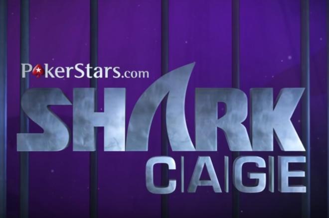 Shark Cage 2
