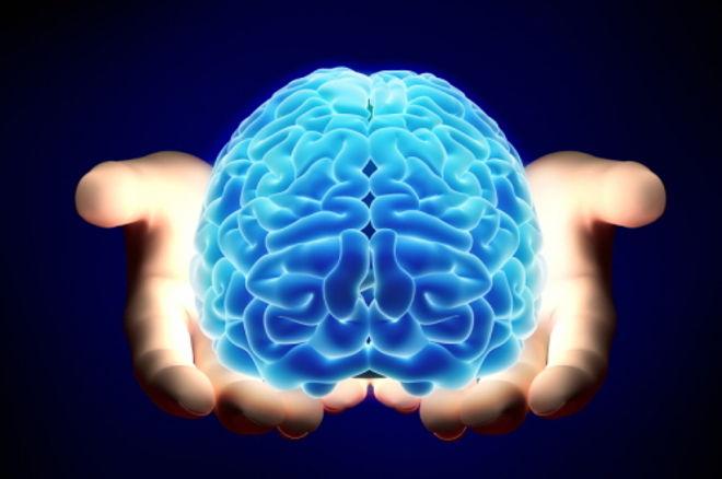 человеческий мозг и покер