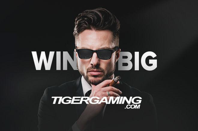 акция TigerGaming