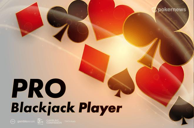 Professional Blackjack Player Guide
