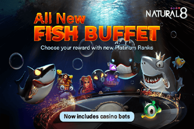 Earn up to 60% cash with the New Buffet Fish Rewards Program