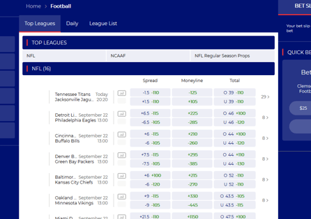 This is BetAmerica football bet odds